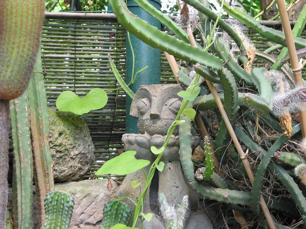 Steinerne Gestalt im Kakteenbeet