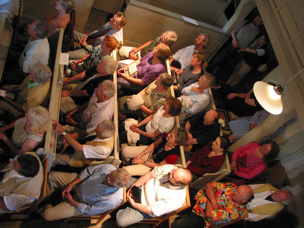 Konzertbesucher mit Paradiesvogel, Konzert mit Musikern der Dresdner Philharmonie, Leitung Norbert Schuster