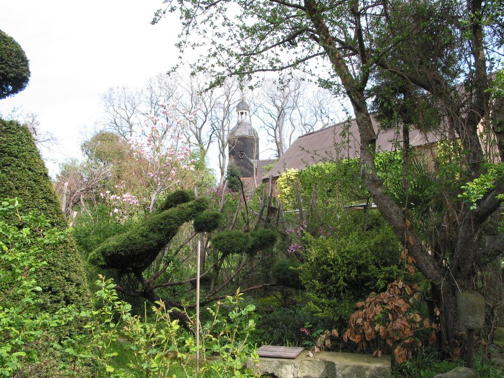 Blick aus dem Garten auf die Kirche
