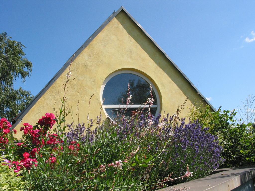 Begrüntes Dach der Galerie: Rosen + Lavendel