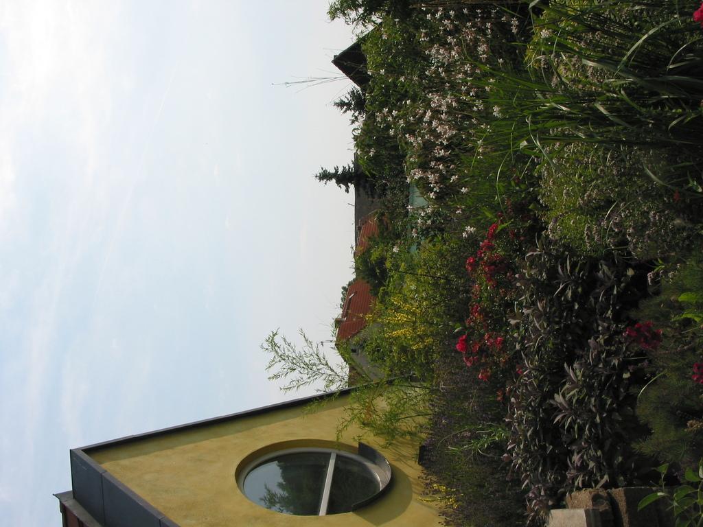 Begrüntes Dach der Galerie