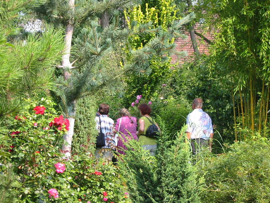 Bambusfest: Besucher überall im Garten