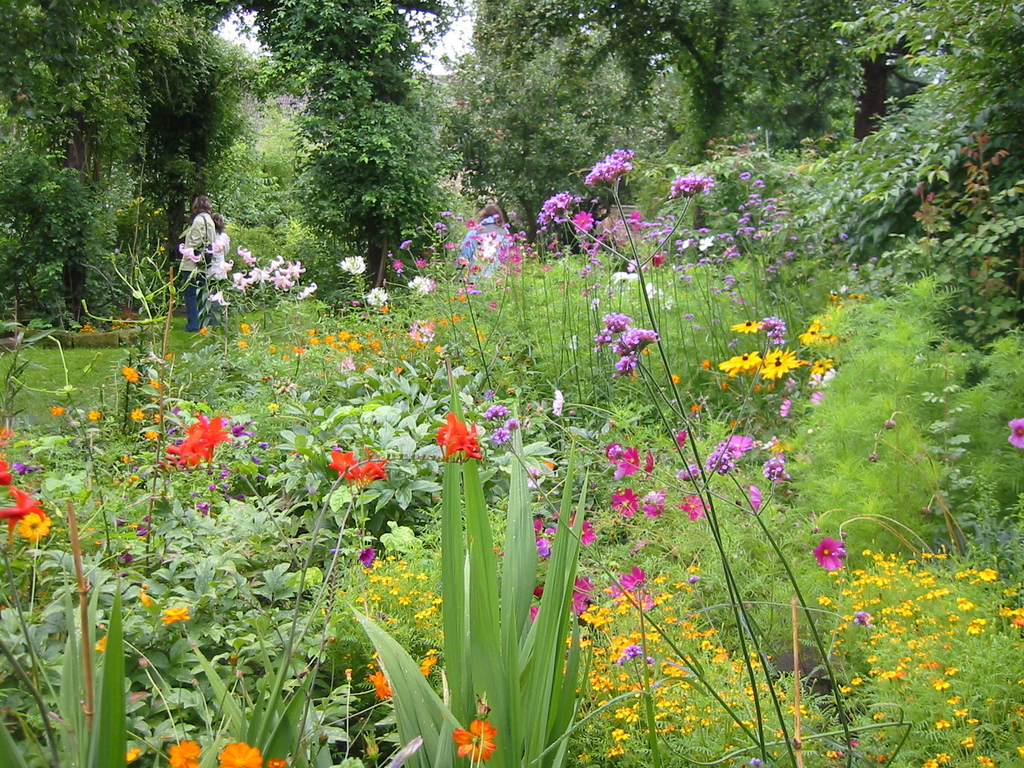 Bambusfest: Gartenimpressionen im Hochsommer. Sommerblumen