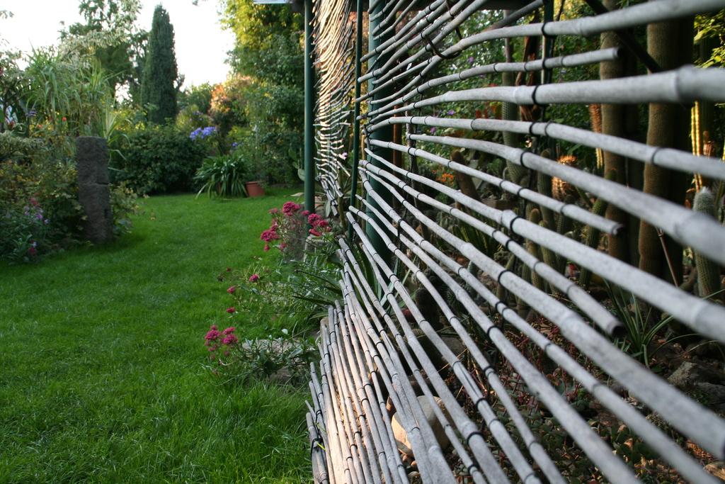 Kakteenbeet mit Bambusvorhang zur Schattierung