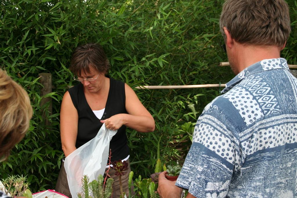 Bambusfest 2009 Pflanzenverkauf