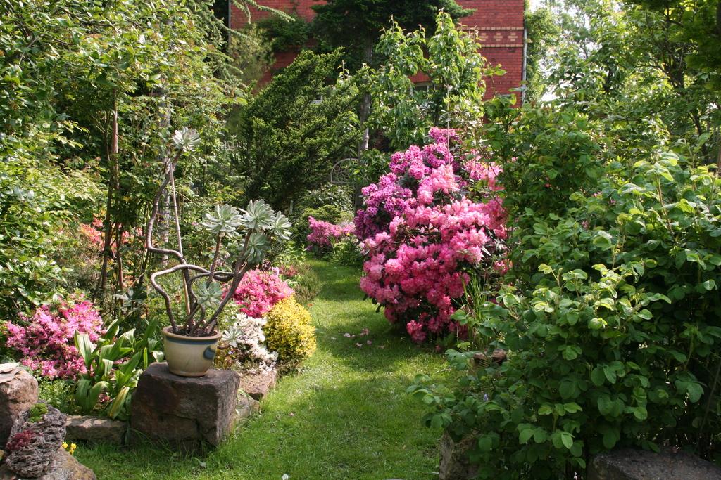 Gartenidyll mit Rhododendren und Azaleen