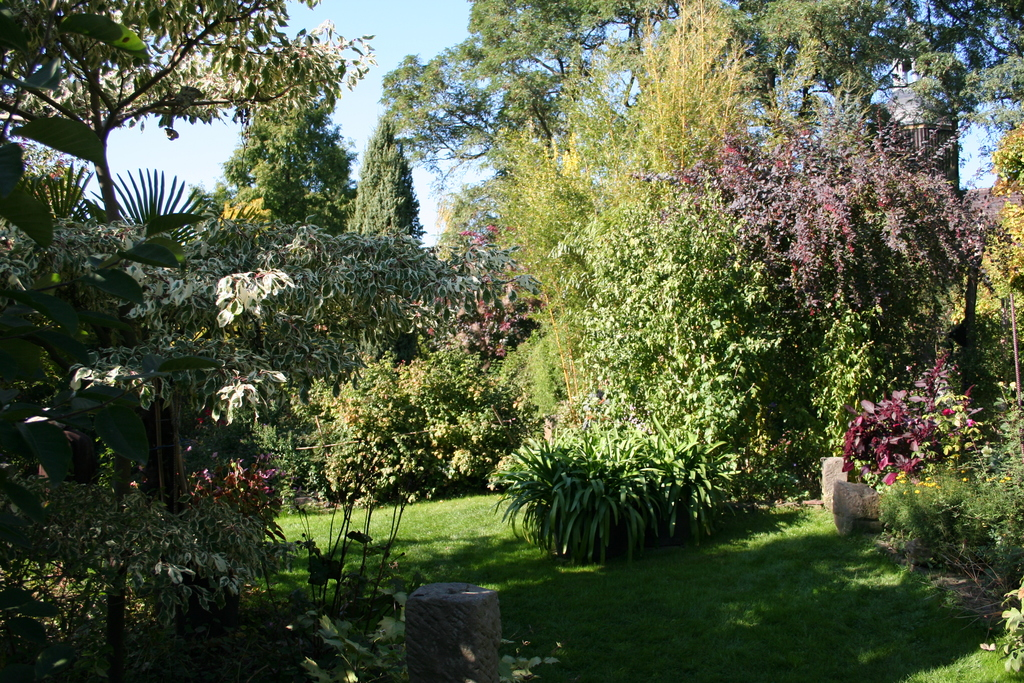 Gartenansicht im Oktober