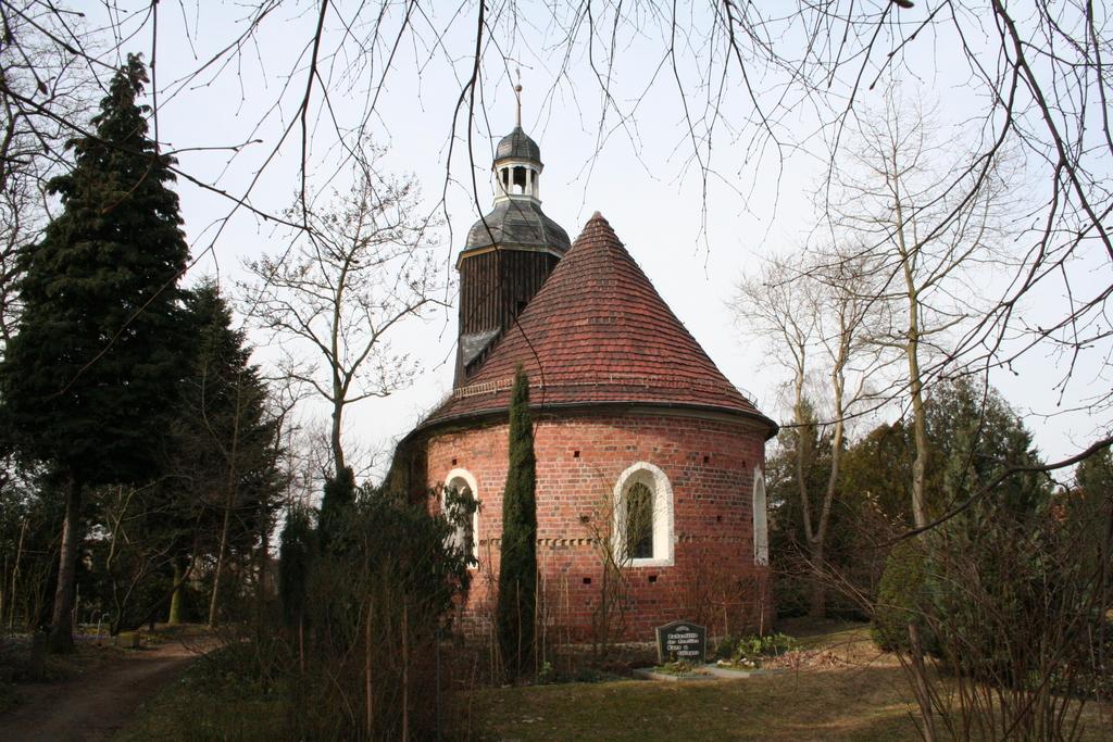 Gehölze setzen im Winter starke Kontraste. Blick zur Kirche.