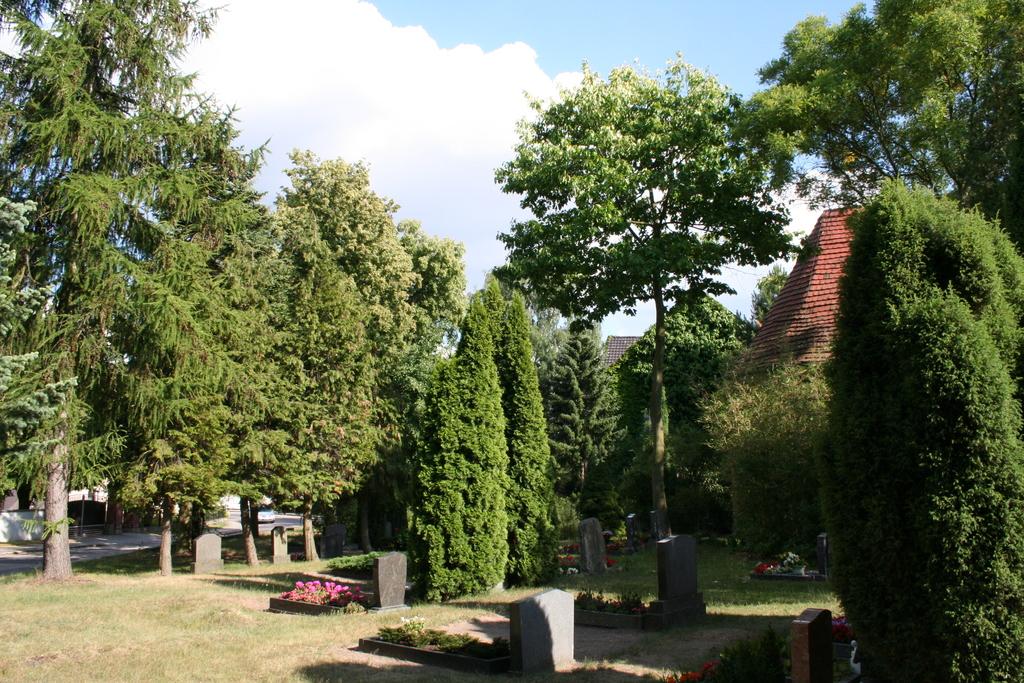 Juli 2014: Gehölze am Friedhof
