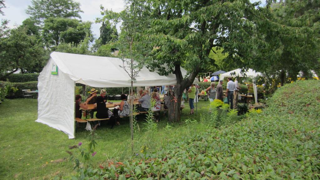Bambusfest 2014