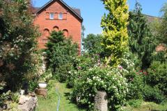 Gartenansicht zur Rosenblüte