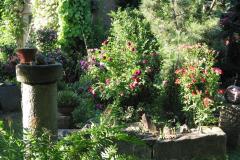 Gartenstimmung mit Rosen