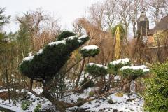 winterliche Struktur