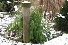 Bambus, Sandstein