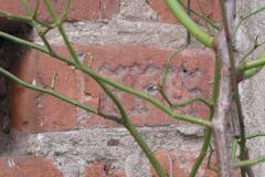 Inschrift in alten Ziegeln