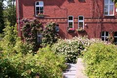 Begrüntes Dach der Galerie: Rosen