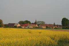 Saxdorf