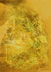 652, 1994, Tempera, Wachskreide auf braunem Packpapier, 77x55, Katalog Seite 23