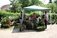 Rosenfest 2011: entspanntes Fachsimpeln beim Pflanzenverkauf der Gärtner