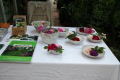 Rosenfest 2011: Schöne Schalen mit Rosenblüten