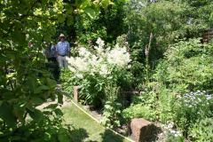 Rosenfest 2011: Entdecker im grünen Dschungel