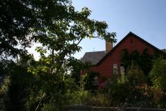 Juli 2014: Blick vom begrünten Dach